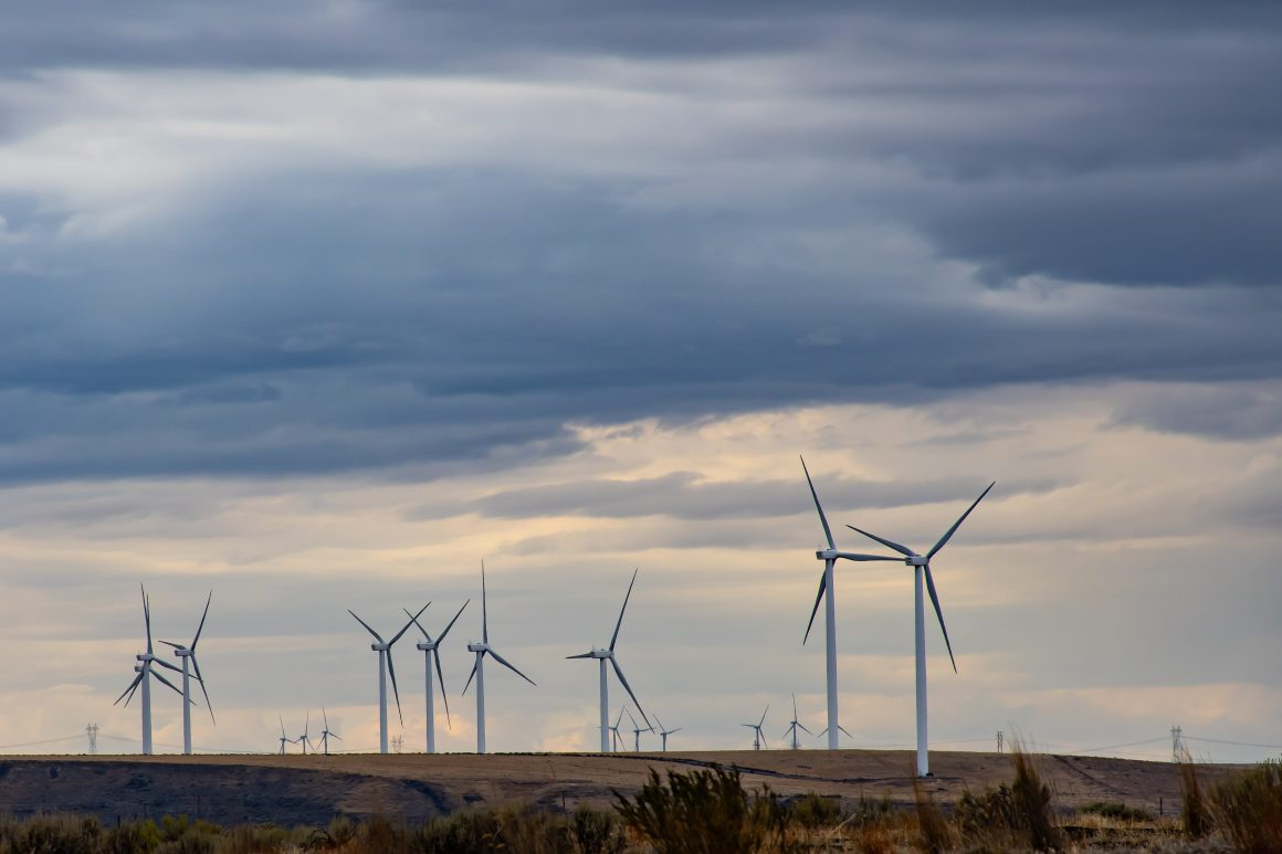 O Relatório de Detalhamento dos Programas Ambientais – RDPA